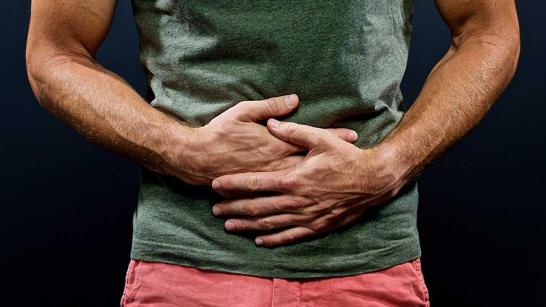 Gastrointestinal tract/Intestine